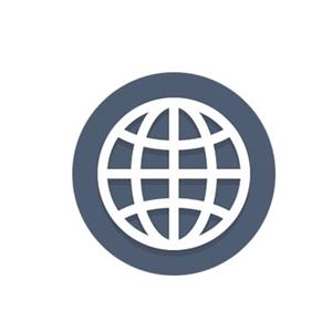 Imagen para la categoría SEO Internacional