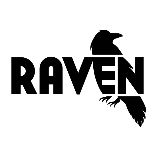 Raven Tools Site Auditor
